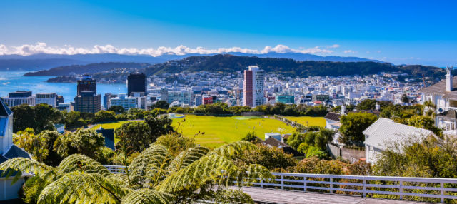 Tour por Wellington