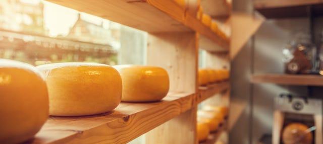 Degustación de quesos holandeses
