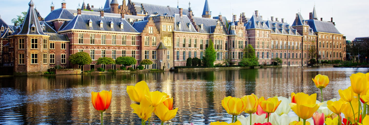 Rotterdam, Delft & The Hague Tour