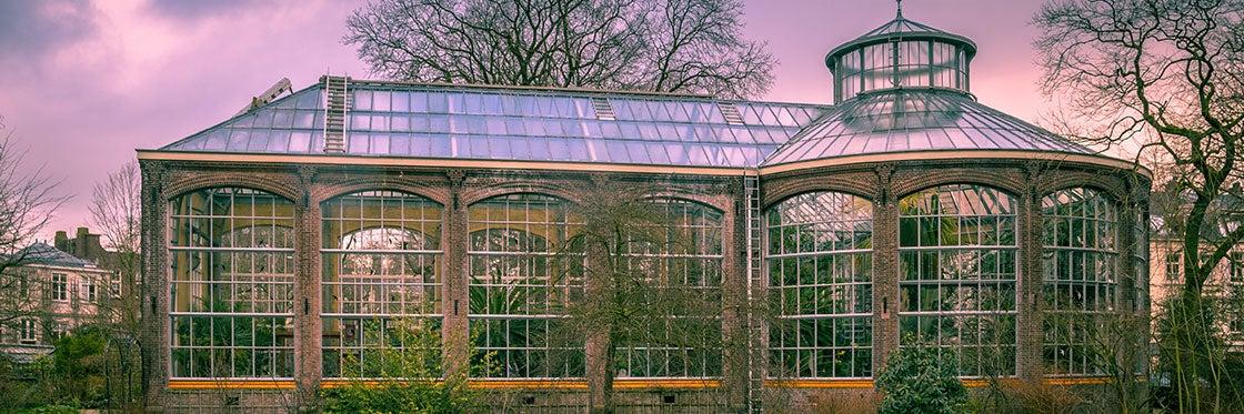 Orto Botanico di Amsterdam