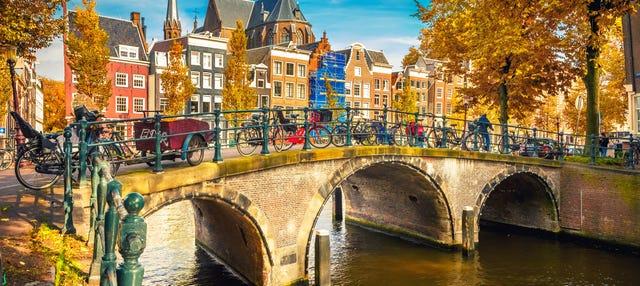 Tour por Ámsterdam para cruceros