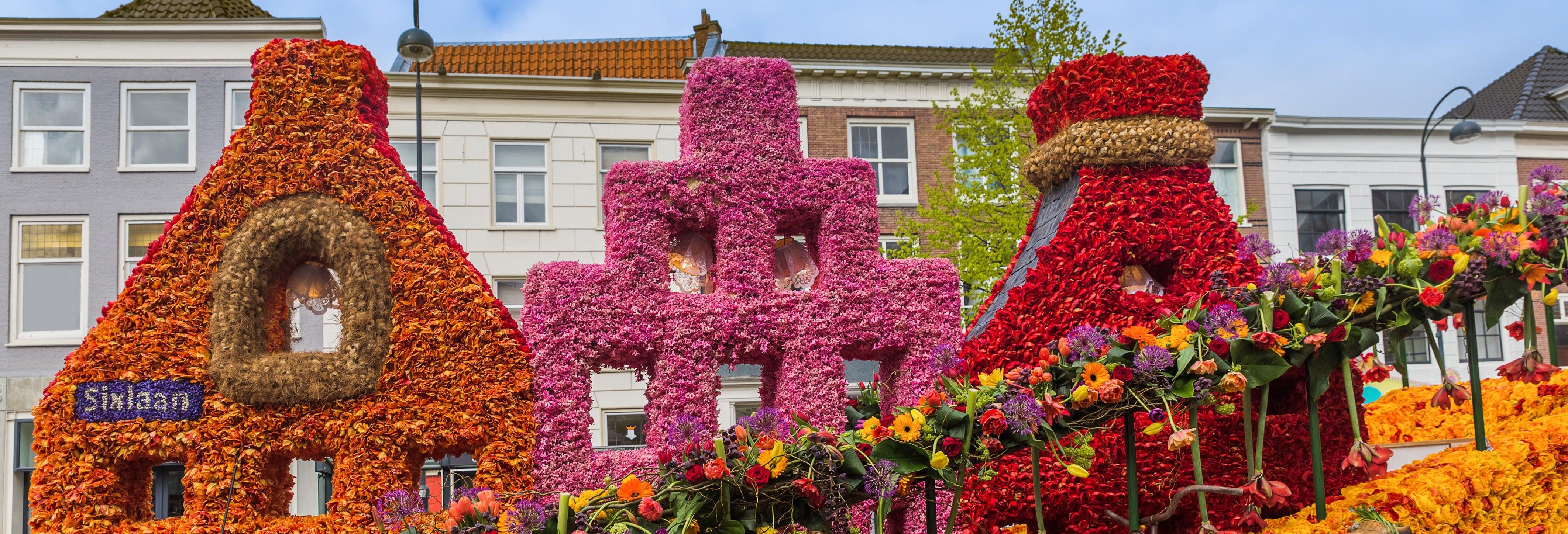 Tour en bicicleta por Haarlem