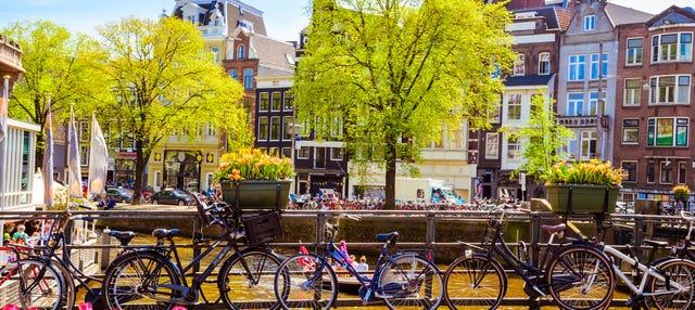 Excursión a Ámsterdam para cruceros