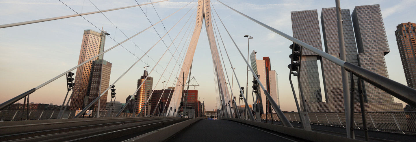 Guided Walking Tour of Rotterdam