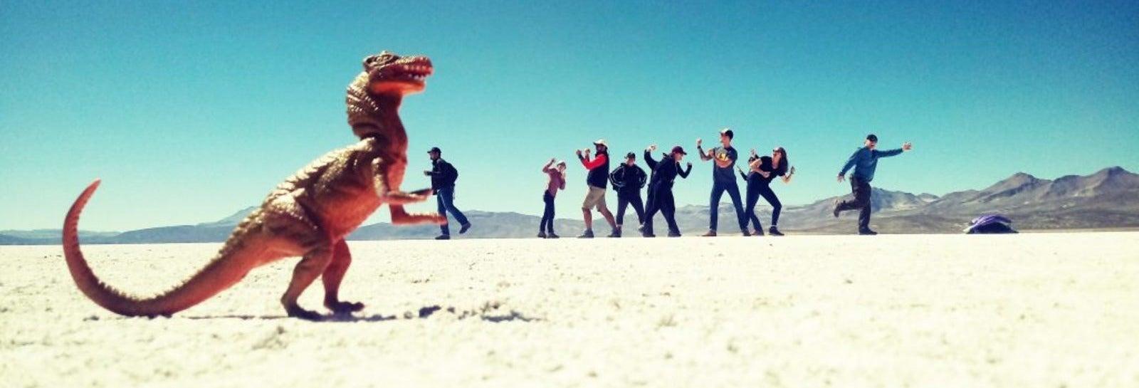 Laguna de Salinas Day Trip + Pichu Pichu Bike Tour