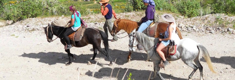 Balade à cheval dans la campagne d'Arequipa