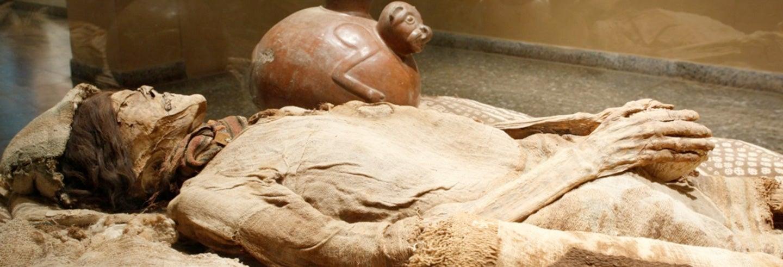 Excursión al Museo Arqueológico Brüning