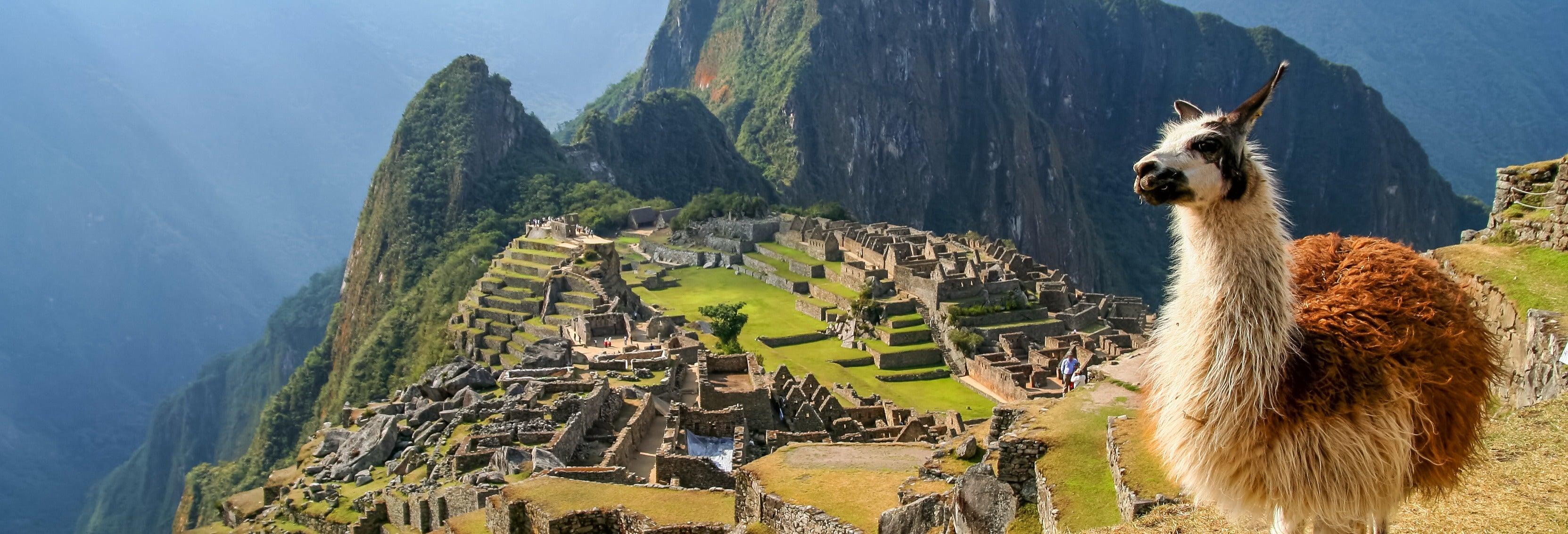 Excursión a Machu Picchu + Montaña Machu Picchu
