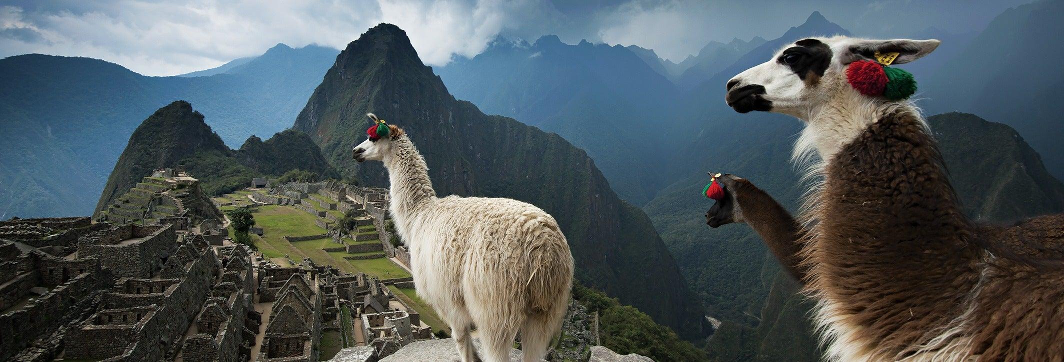 Selva de Machu Picchu, Valle Sagrado y Montaña Arcoíris en 6 días