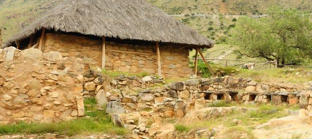 Excursión a Kotosh