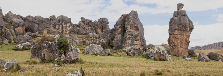 Excursión al Santuario Nacional de Huayllay
