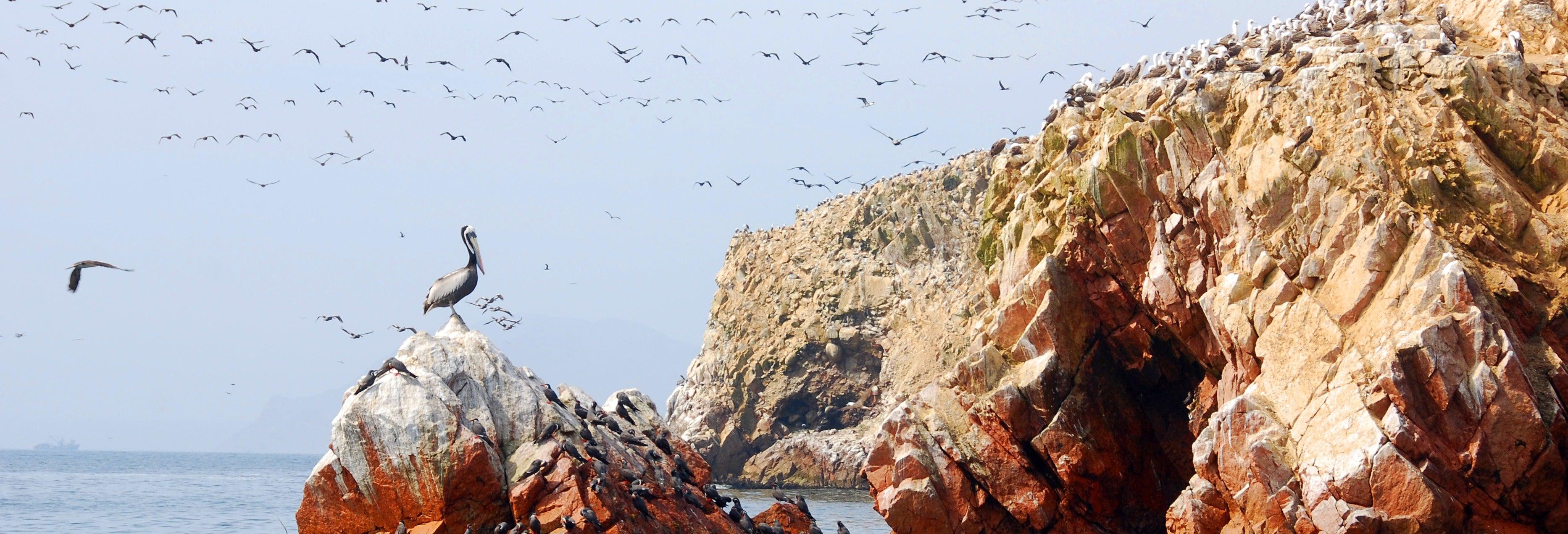 Excursion de 3 jours à Nazca, Ica et Paracas