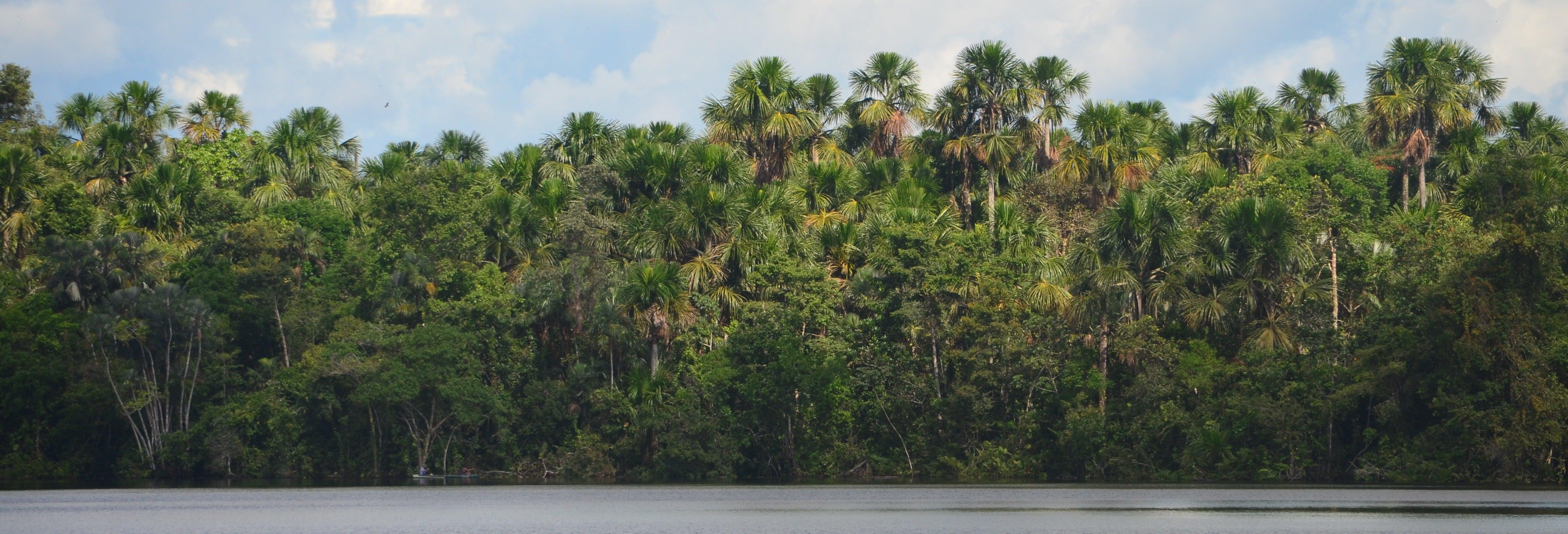 Escursione sul Rio delle Amazzoni