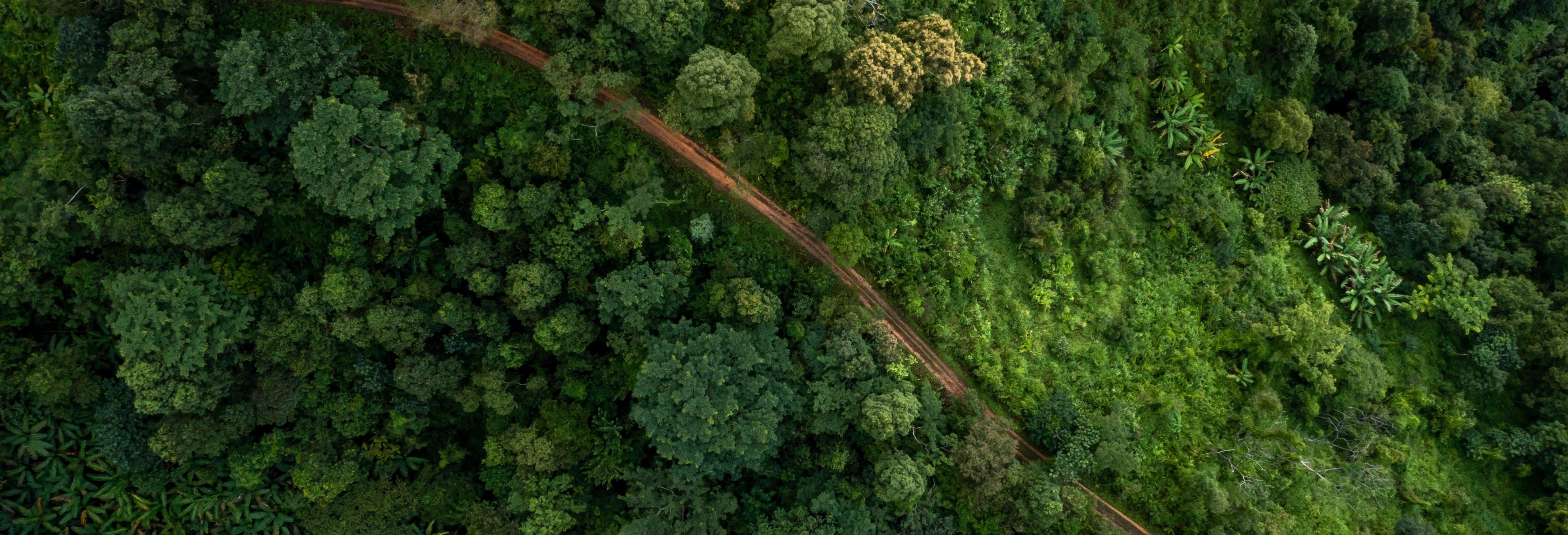 Tour de 4 días por el norte del Amazonas