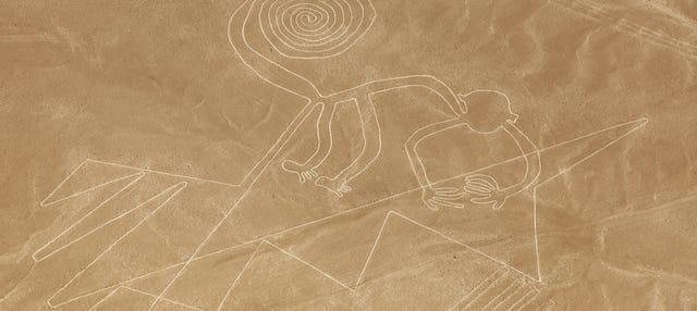 Excursión a Ica y vuelo sobre las Líneas de Nazca