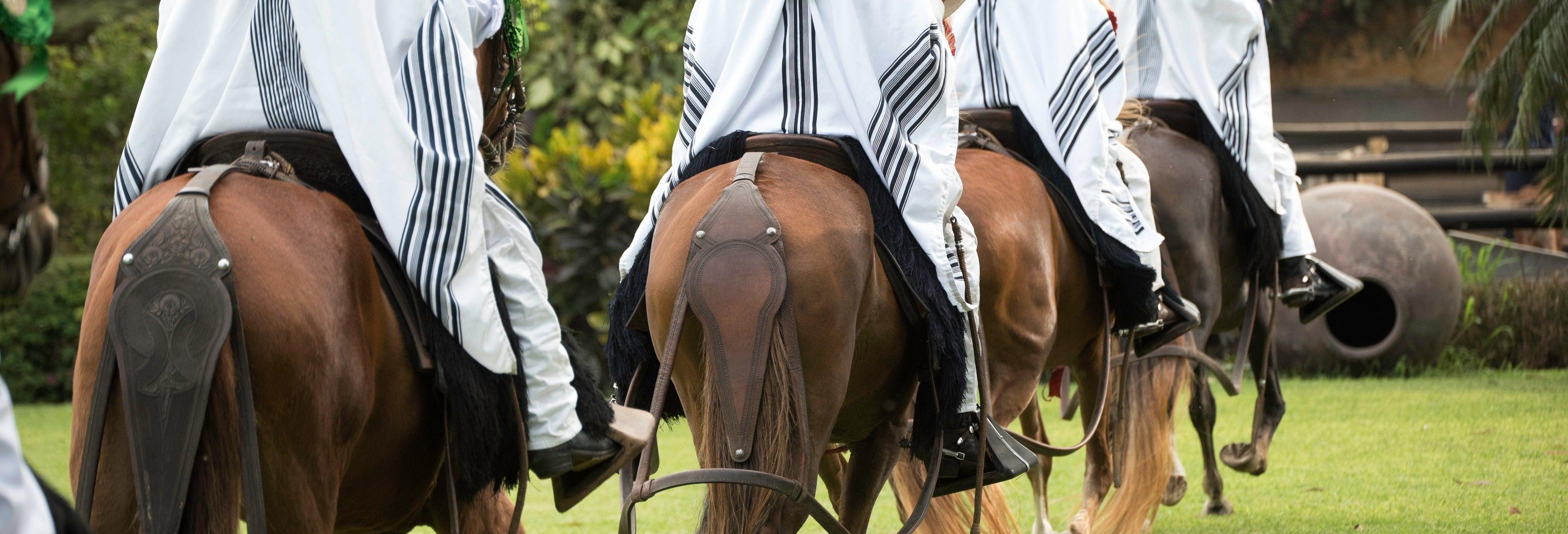 Tour por Pachacamac + Espetáculo de cavalos peruanos de passo