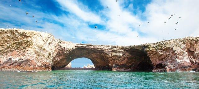 Excursión a las islas Ballestas