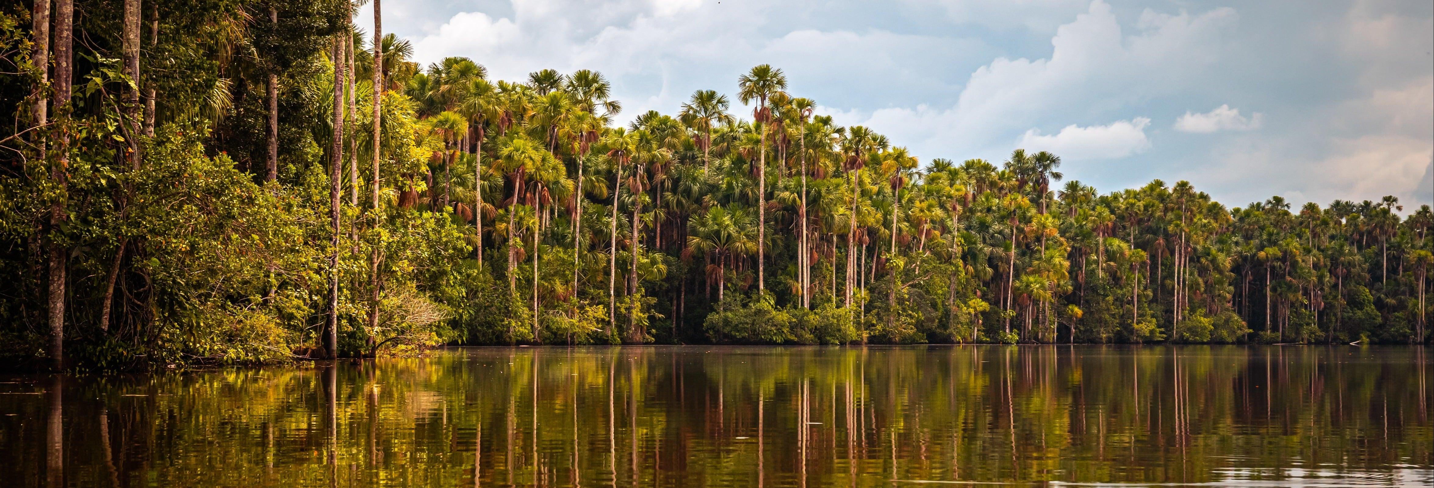 Trekking por la selva + Lago Sandoval