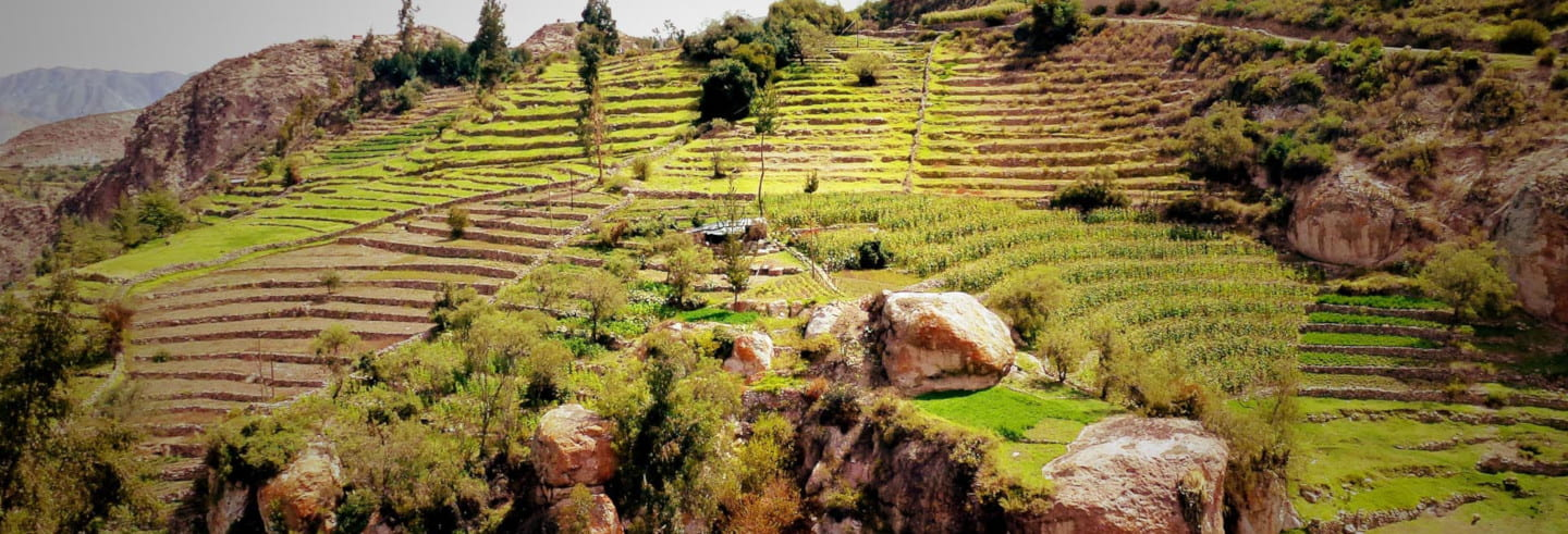 Excursión a Tarata y Ticaco