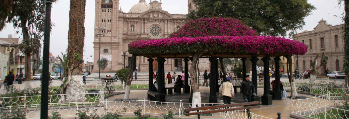 Tacna Bus Tour