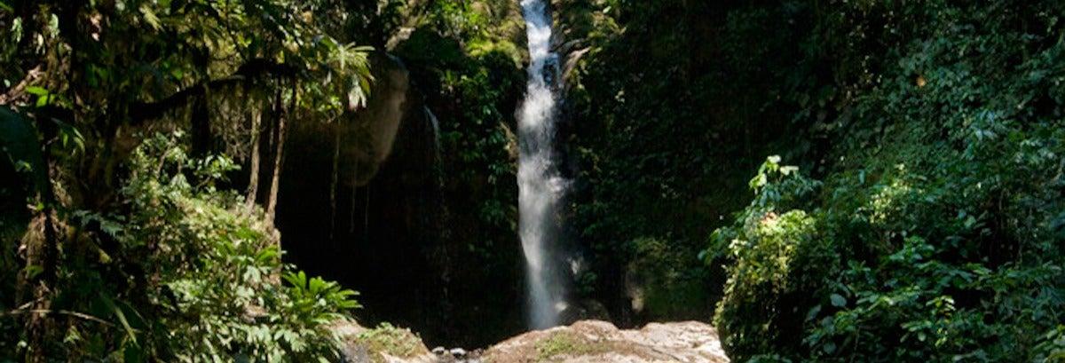 Excursão a Gloriapata