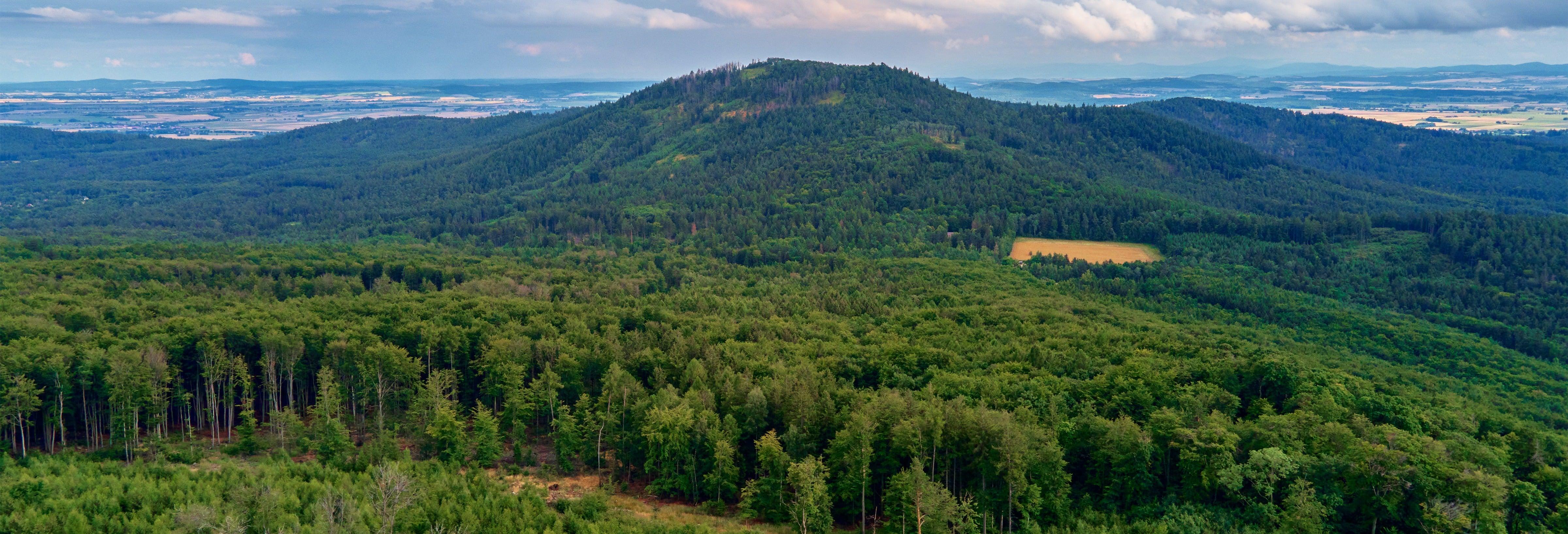 Visite du mont Ślęża, Krzyżowa et Świdnica