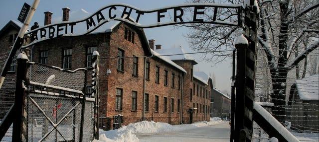 Oferta: Auschwitz + Minas de Sal en un día