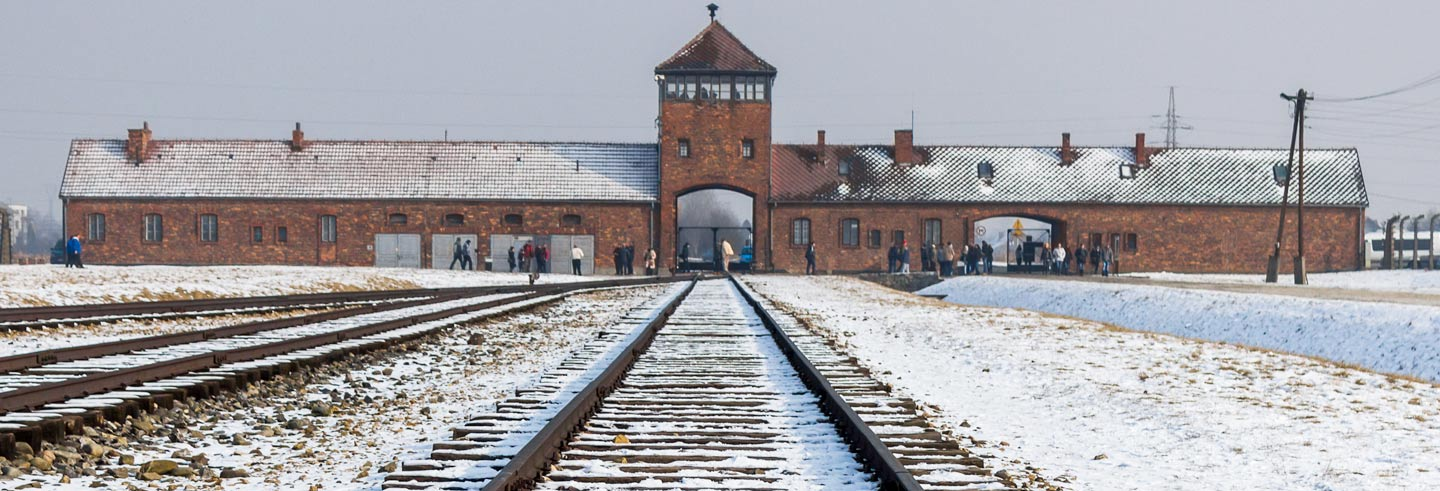 Krakow Combo: Auschwitz and Salt Mine Tour