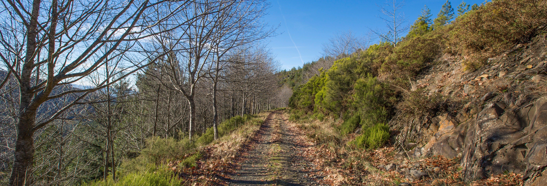 Tour en todoterreno por la Sierra de Marão