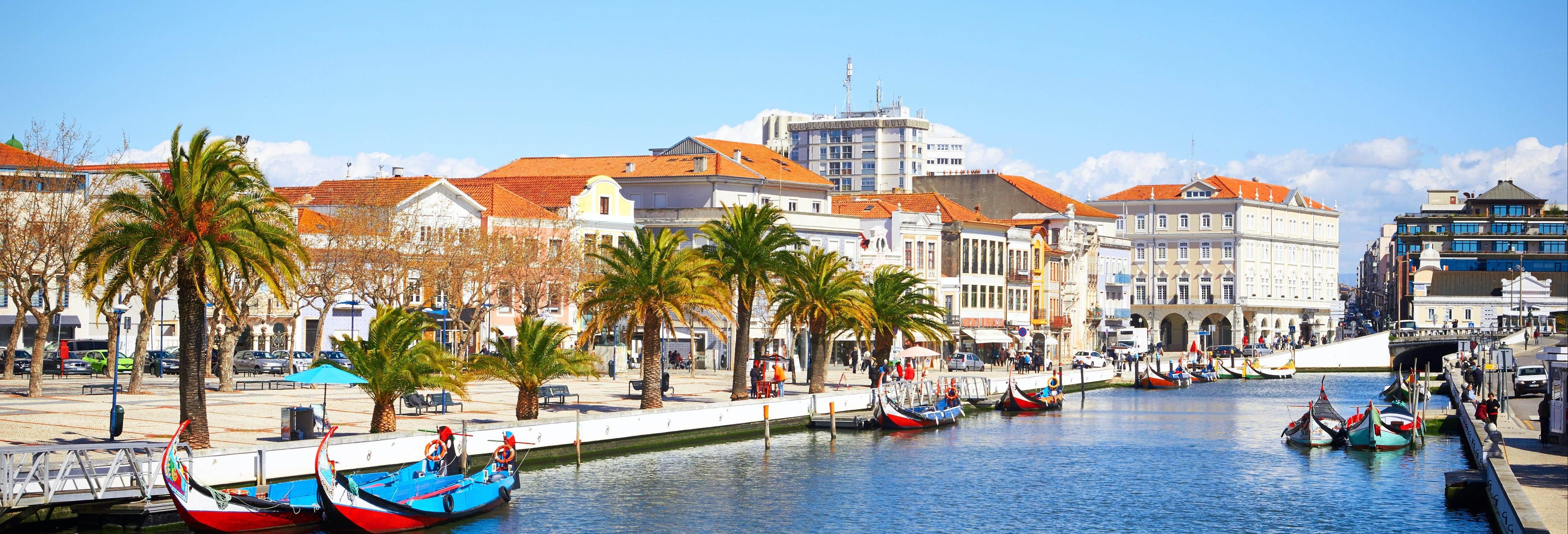 Tour por Costa Nova + Salinas + Paseo en barco moliceiro