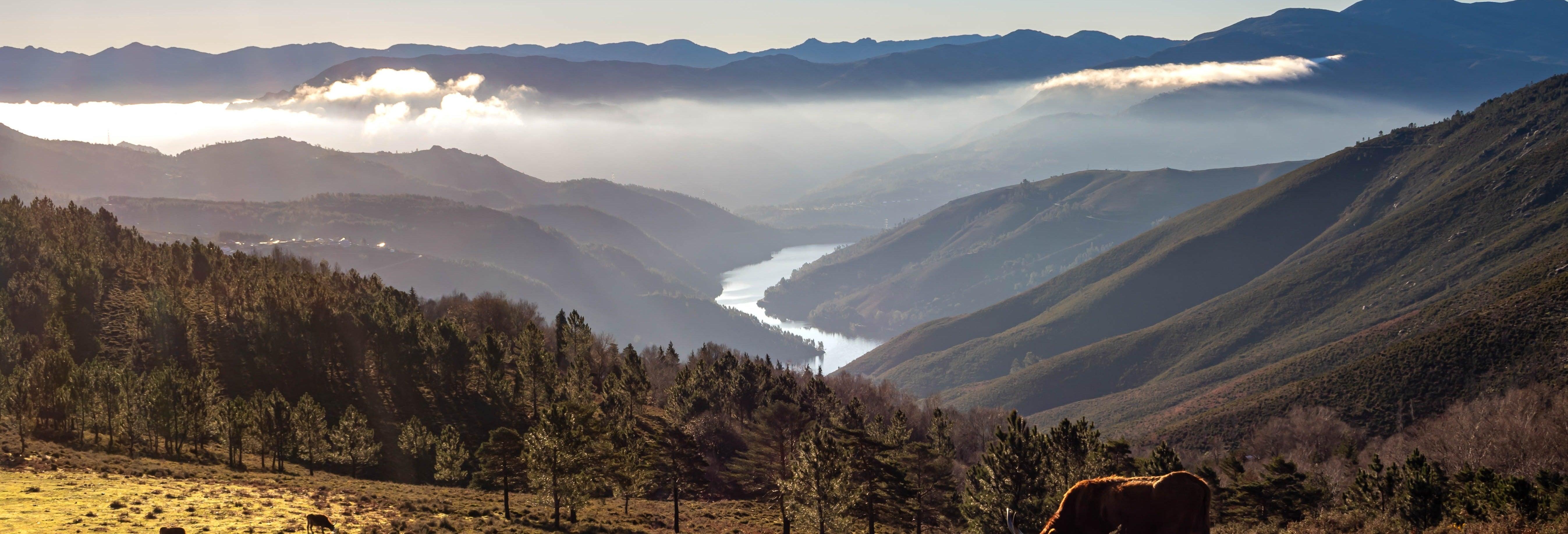 Excursión al Parque Nacional de Peneda-Gerês