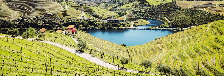 Douro Valley Tour