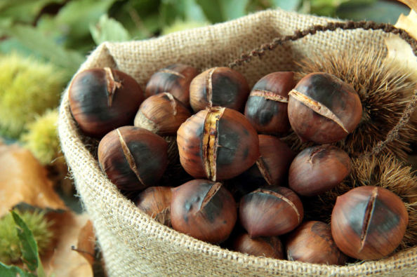 Portugues roasted chestnuts