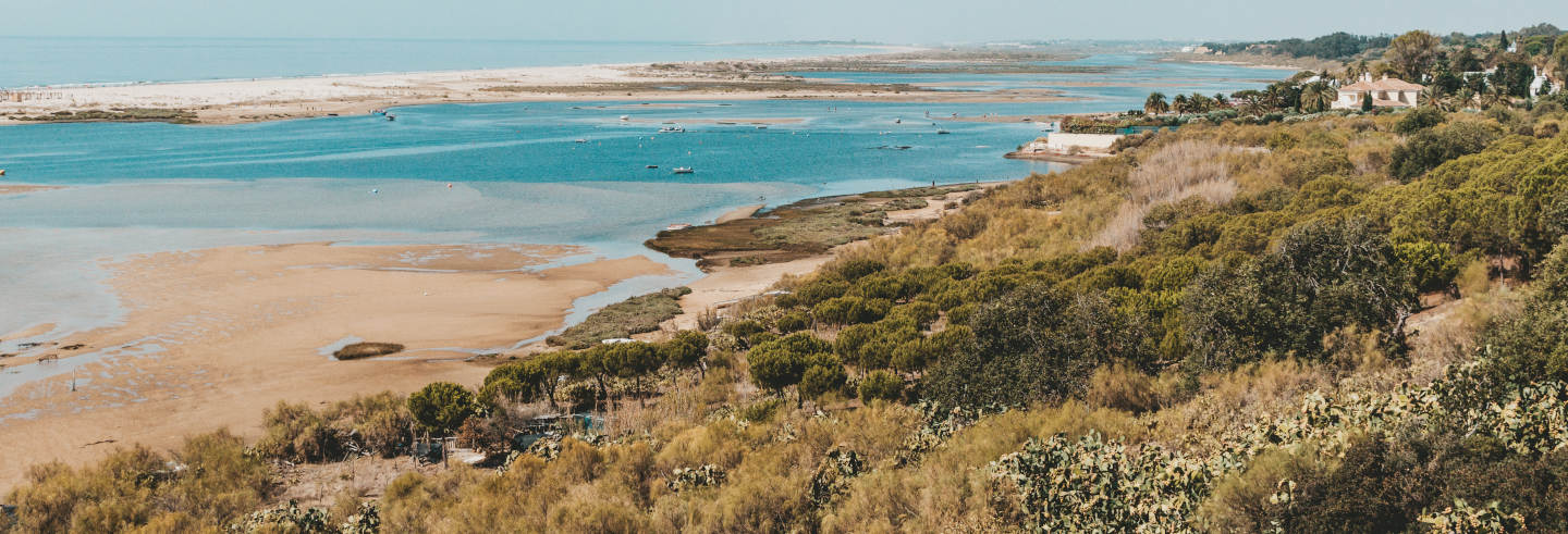Balade en bateau à moteur sur la Ria Formosa