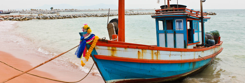 Tour del pescado por Matosinhos