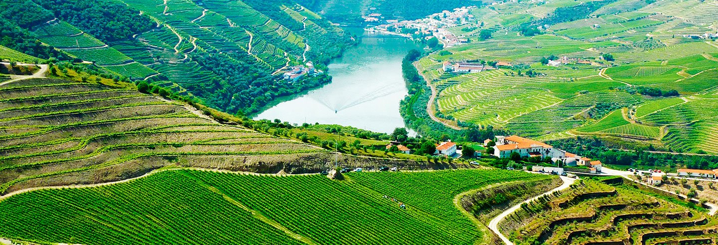 Douro Region Full-Day Trip