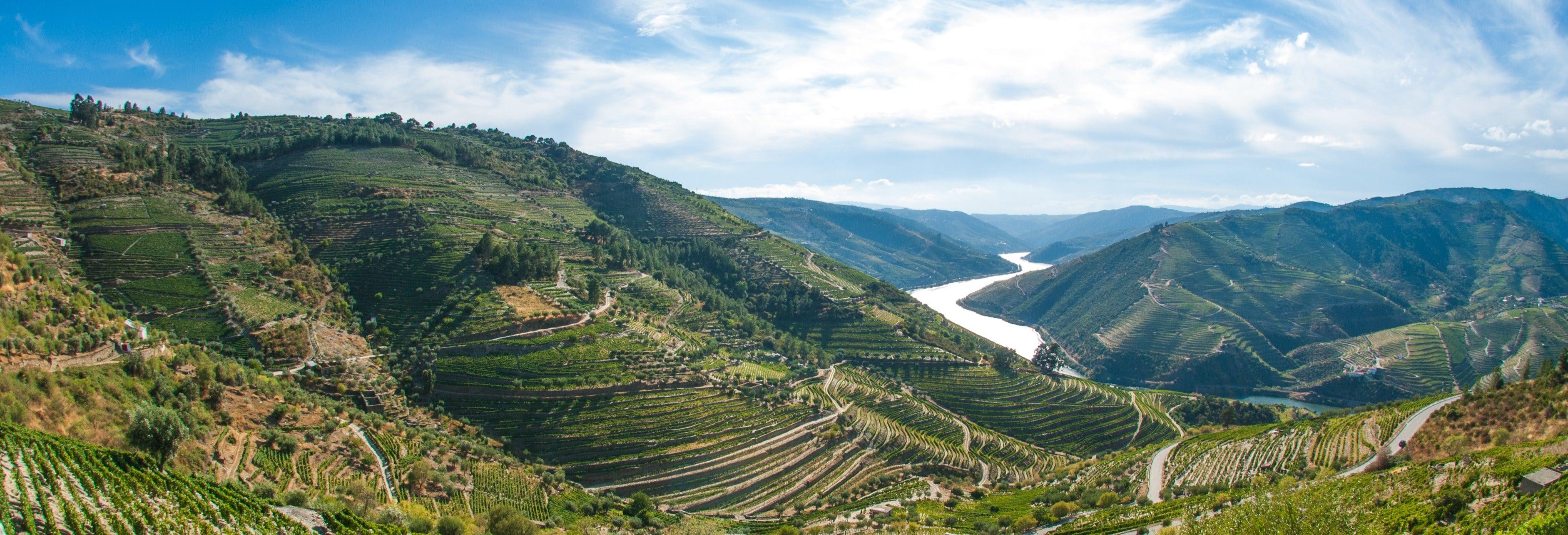 Tour pela região do Douro