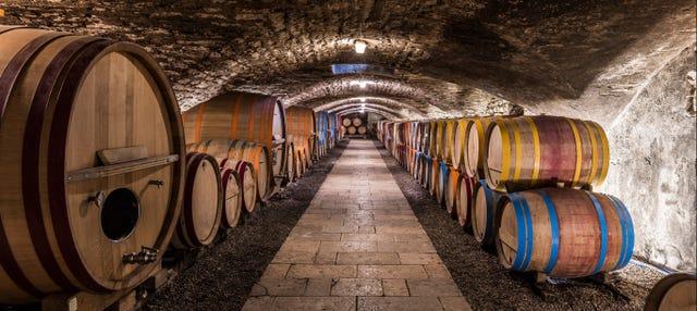 Tour di vigneti e cantine nella Valle del Douro