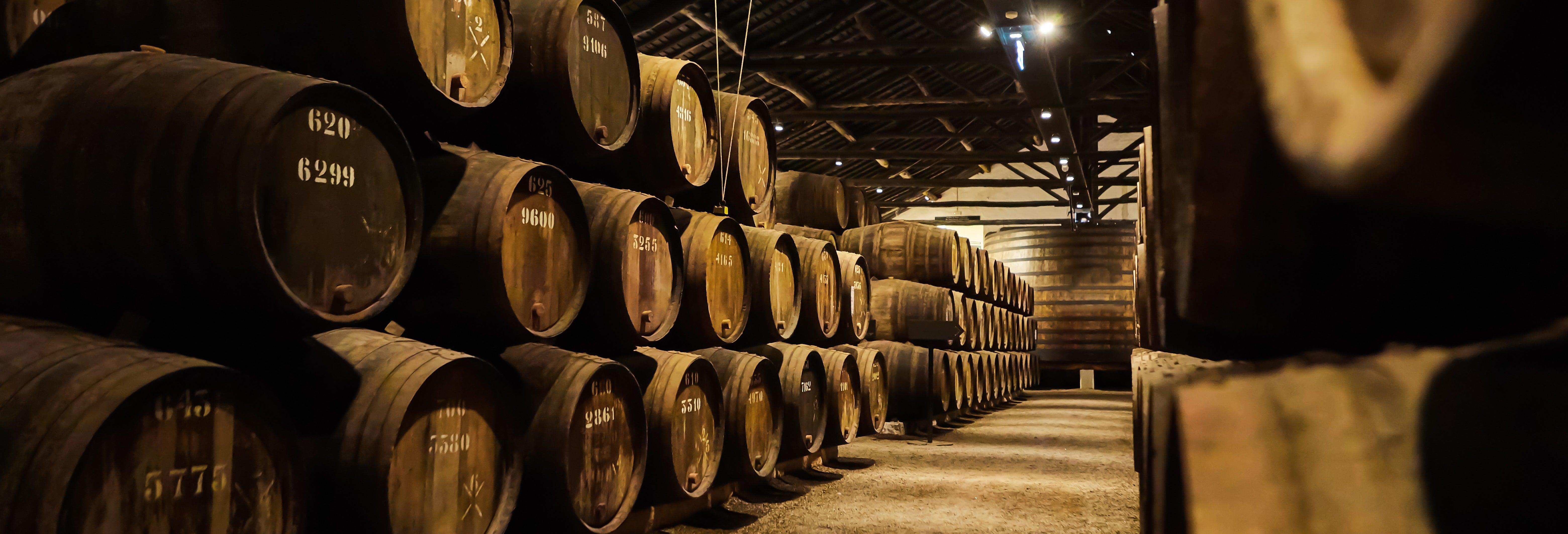 Tour de vinhos + Visita à cave Fonseca