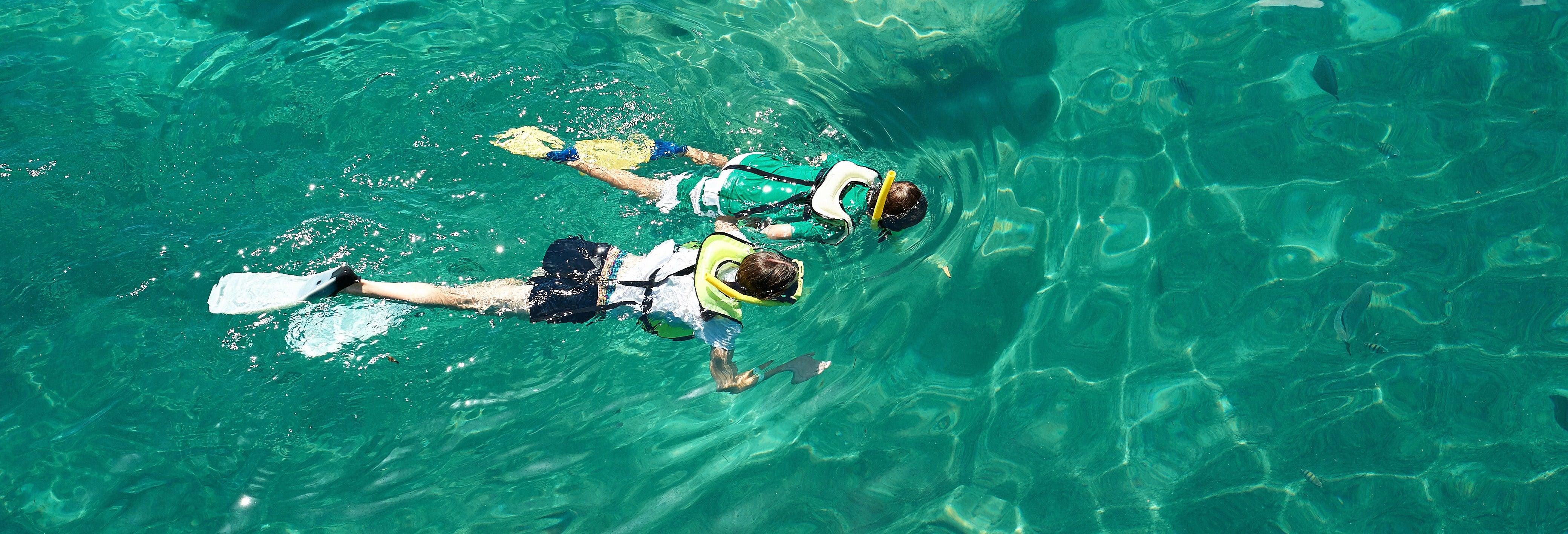 Snorkel no Parque Natural da Arrábida