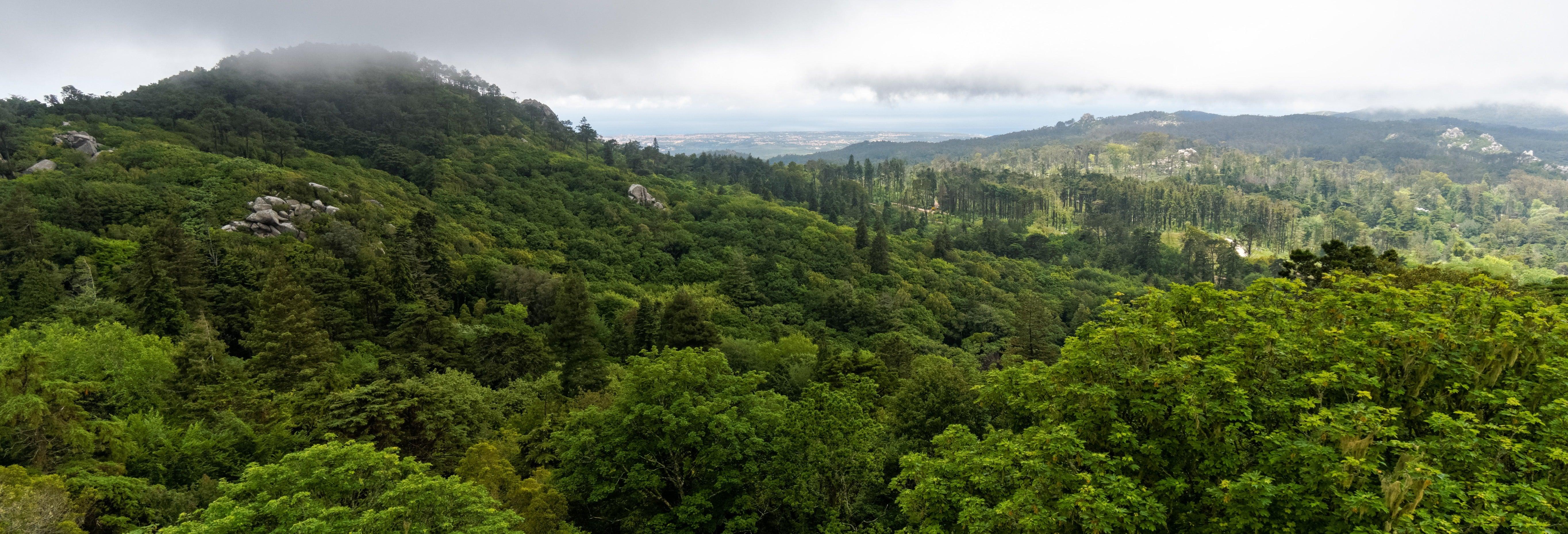Trekking al Parco Naturale Sintra-Cascais