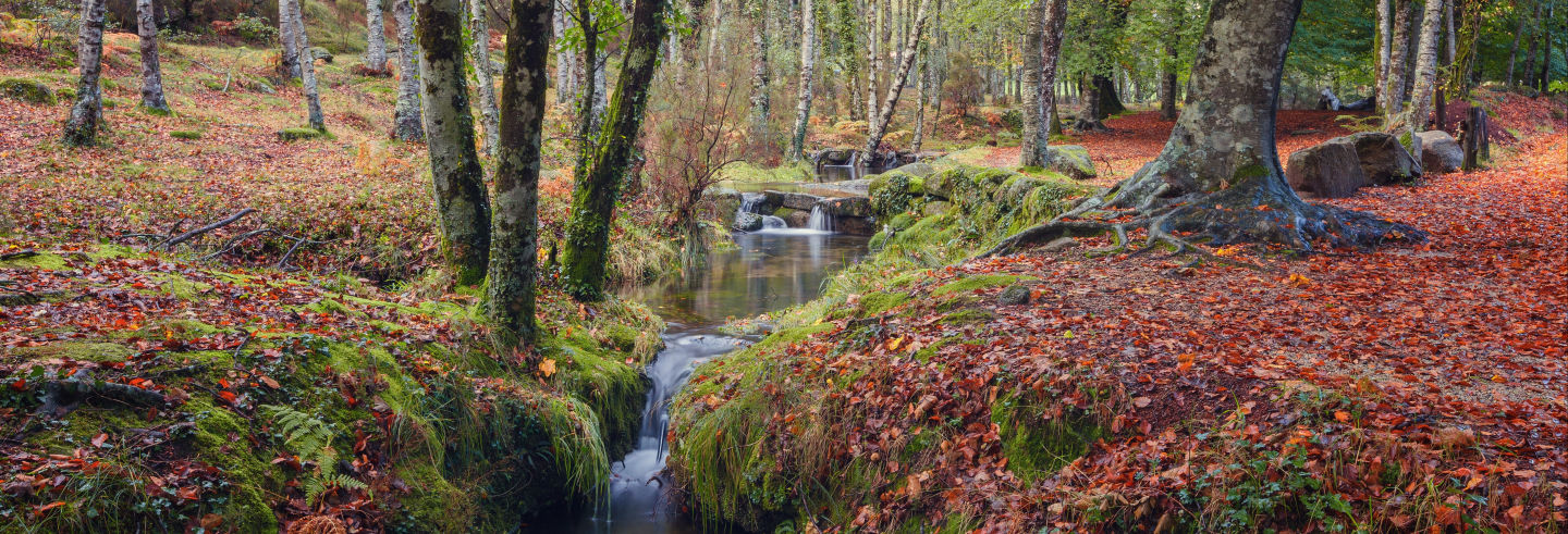 Tour por el Parque Nacional Peneda-Gerês