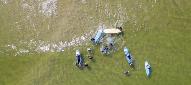 Curso de surf en Vila Nova de Milfontes