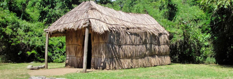 Escursione privata ai siti archeologici di Tibes e Caguana