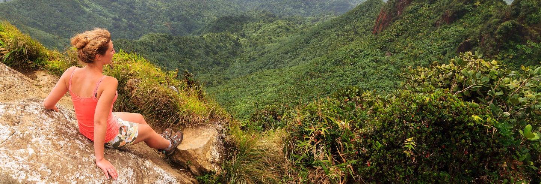 Bosque Nacional El Yunque + Bahías bioluminiscentes
