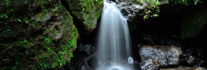 Waterfall and Zama Mural Private Trip