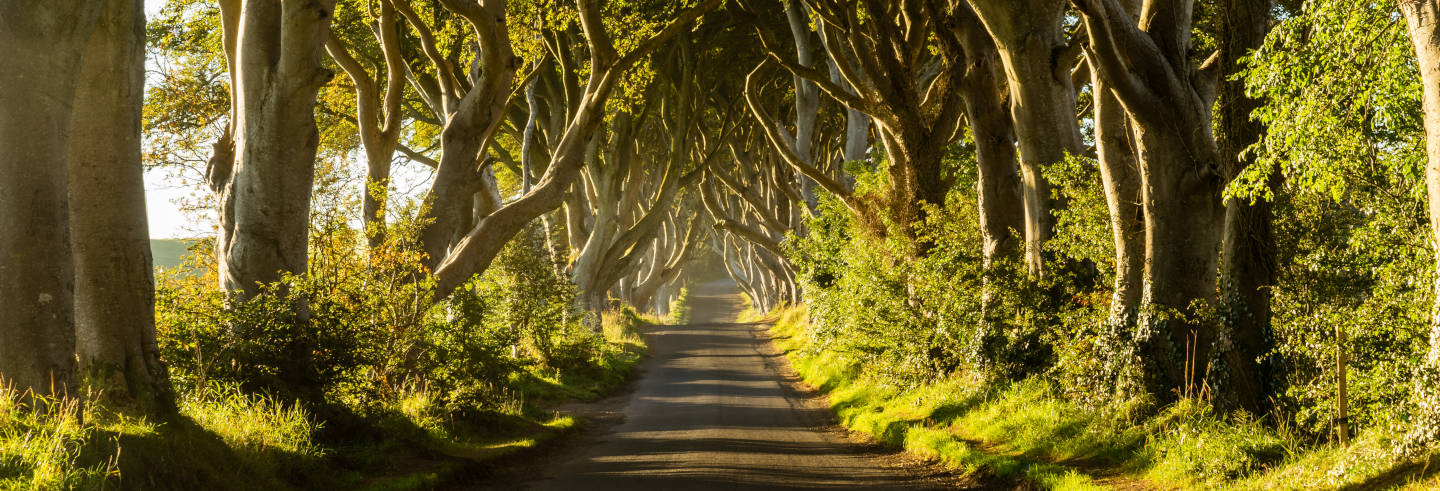 Game of Thrones & Giant's Causeway Tour