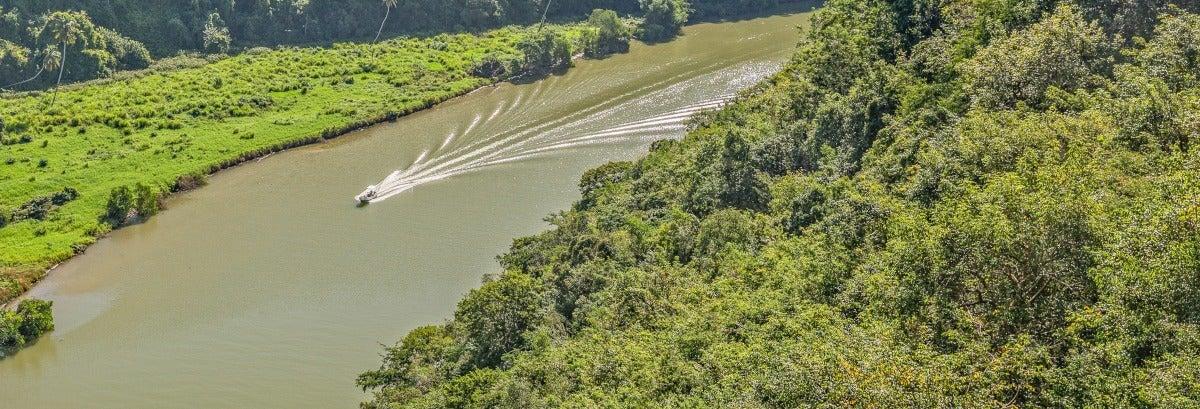 Plantações de cana-de-açúcar e Higüey + Passeio de barco pelo rio Chavón