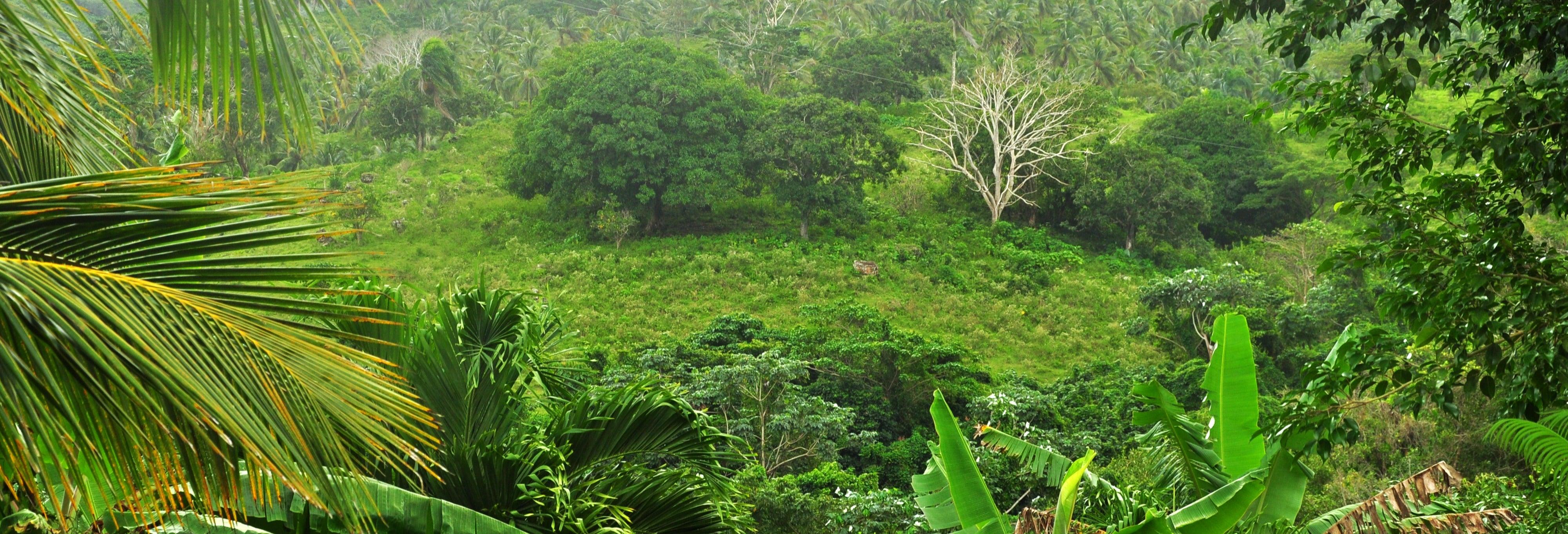 Tour di Punta Cana in bici