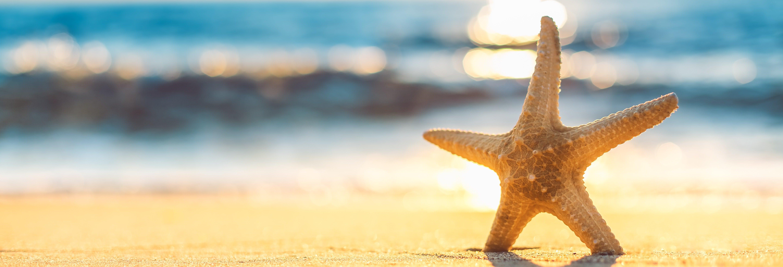 Excursión privada a las playas Onda y Ermitaño